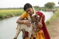 Actress Vasundhara in Sonna Puriyadhu Movie Stills