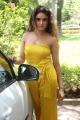 Actress Sony Charishta Hot  Yellow Dress Photos @ Mela Teaser Launch