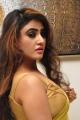 Actress Sony Charishta Green Yellow Saree Pics