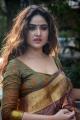 Actress Sony Charishta Pattu Saree Photos