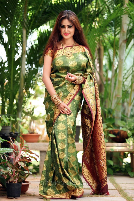 Actress Sony Charishta Silk Saree Photoshoot Images