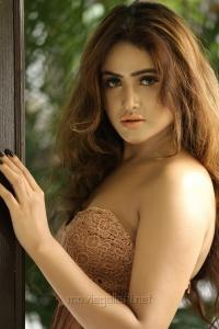 Telugu Actress Sony Charishta Latest Hot Photoshoot Stills