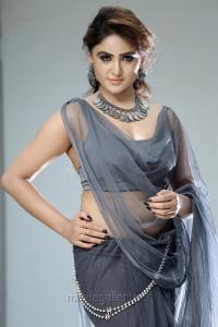 Telugu Actress Sony Charishta Hot Photoshoot Stills