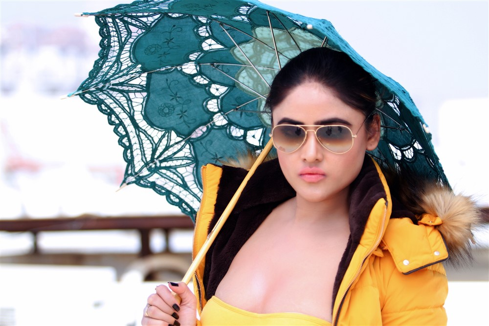 Actress Sony Charishta New Hot Photo Shoot Images