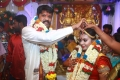 Actor Soundararaja Tamanna Wedding Photos