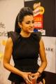 Trisha @ South Indian International Movie Awards 2013 Day 1 Stills