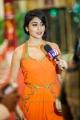 Shriya Saran @ South Indian International Movie Awards 2013 Day 1 Stills