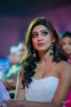 Pranitha @ South Indian International Movie Awards 2013 Day 2 Stills