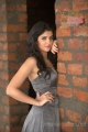 Hot Deeksha Seth in Southspin Fashion Awards 2012 Calendar Stills