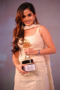 Sheena Shahabadi at SouthSpin Fashion Awards 2012 Function Photos