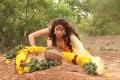 Lakshmi Rai in Sowkarpettai Movie Latest Photos