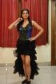 Sakshi Chaudhary @ Speedunnodu Movie Audio Launch Photos