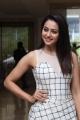 Actress Rakul Preet Singh @ Spyder Press Meet Chennai Stills