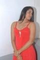 Actrses Sravya Reddy Hot Photos at NRI Platinum Disc Function