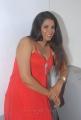 Sravya Reddy Hot Photos at NRI Platinum Disc Function