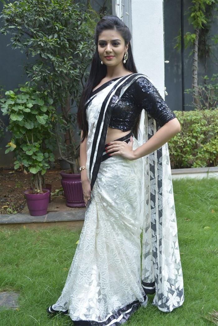 Beautiful Sree Mukhi at Mrs Telangana 2015 Curtain Raiser