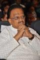 SP Balasubramaniam at Sri Kala Sudha Telugu Association Awards 2013 Photos