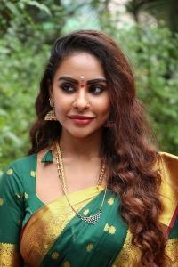Actress Sri Reddy in Silk Saree Photos