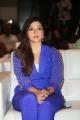 Actress Mehreen Pirzada @ Dil Raju Sri Venkateswara Creations 2017 Success Celebrations Stills