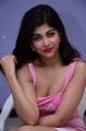 Shukra Movie Actress Srijita Ghosh Pink Skirt Pics