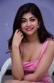 Actress Srijitaa Ghosh New Pics @ Shukra Movie Thanks Meet