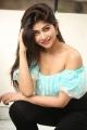 Shukra Movie Heroine Srijitaa Ghosh Photos