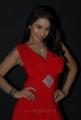 Srilekha Hot Photos at Aravind 2 Audio Launch