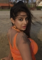 Actress Srilekha Spicy Hot Images