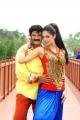 Balakrishna, Parvati Melton in Srimannarayana Movie Latest Stills