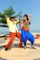 Balakrishna & Parvati Melton in Srimannarayana New Stills