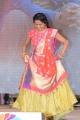 Anchor Suma @ Srirastu Subhamastu Pre Release Function Stills
