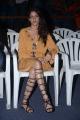 Actress Lavanya Tripathi @ Srirastu Subhamastu Trailer Launch Stills