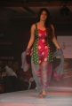 Soumya Bollapragada @ Hyderabad International Fashion week 2011 Day 1