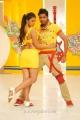 Allari Naresh Monal Gajjar in Sudigaadu Movie Hot Stills
