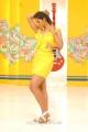 Monal Gajjar Hot Stills in Sudigaadu Movie