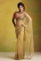 Actress Suja Hot Saree Photo Shoot Pics