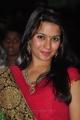 Bhavna Ruparel at Sukumarudu Movie Audio Launch Stills