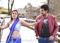 Hot Nisha Agarwal, Aadi in Sukumarudu Movie Stills