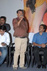 Sukumarudu Triple Platinum Disc Function Photos