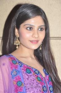 Actress Vibha Natarajan at Summa Nachunnu Irukku Movie Press Meet Stills