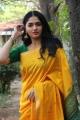 Kaali Movie Actress Sunaina in Yellow Silk Saree Photos HD