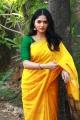 Heroine Sunaina Saree Photos HD @ Kaali Movie Press Meet