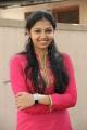 Lakshmi Menon at Sundarapandian Audio Launch Stills