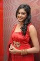 Actress Arundathi at Sundattam Movie Audio Launch Stills
