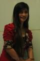 Actress Sunita Stills at I-Na Movie Launch