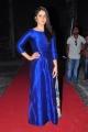 Raashi Khanna @ Supreme Movie Success Meet Stills