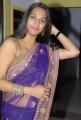 Surekha Vani Hot in Transparent Saree Stills