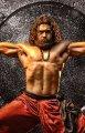 Surya as Bodhidharma Stills
