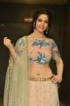 Perlene Bhesania @ Suryakantham Pre Release Function Stills