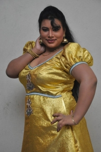 Actress Sushmita Hot Stills at Amma Nanna Oorelithe Audio Function